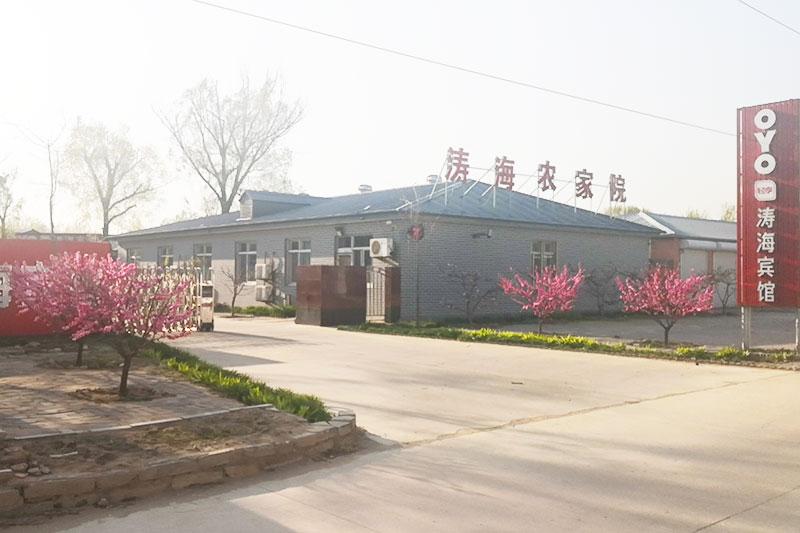 昌黎黄金海岸涛海农家院