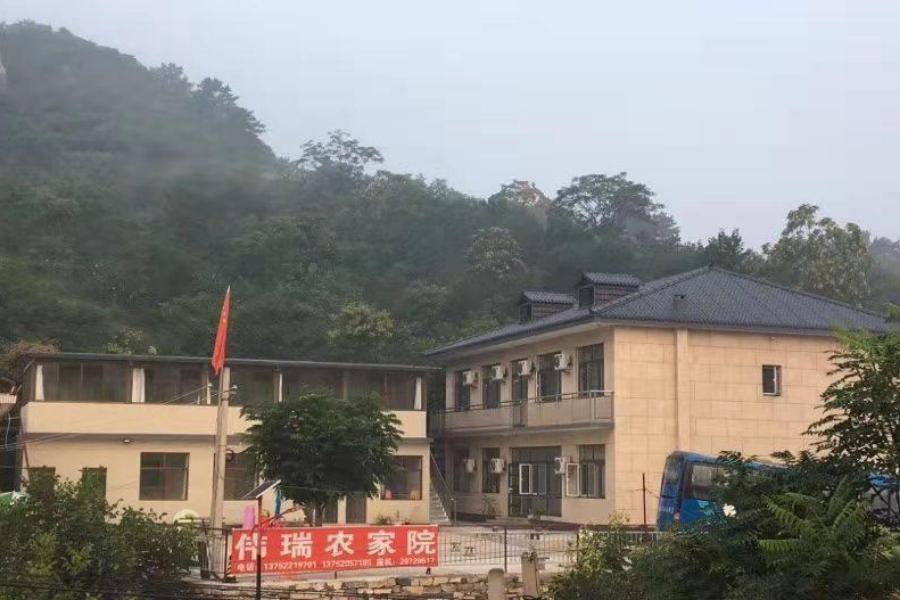 九龙山伟瑞农家院